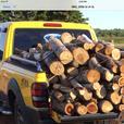 Firewood or camp firewood